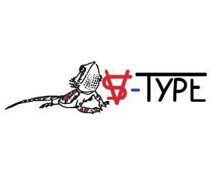 Logo VS-Type